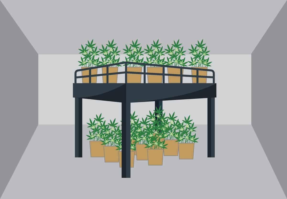 4 Ways a Mezzanine Can Help Your Marijuana Grow Facility